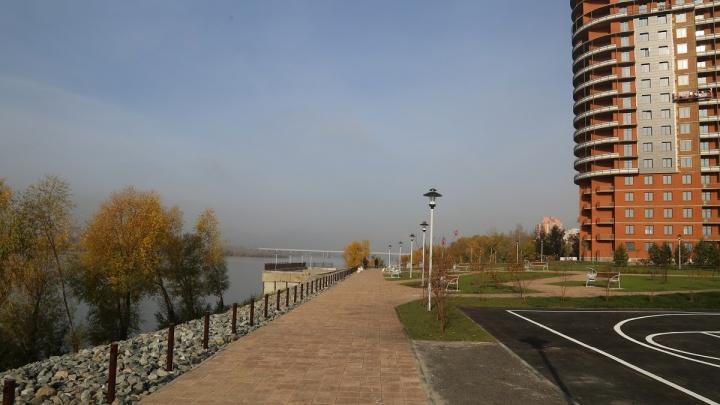 На набережной появились новые прогулочные дорожки и высадили лес