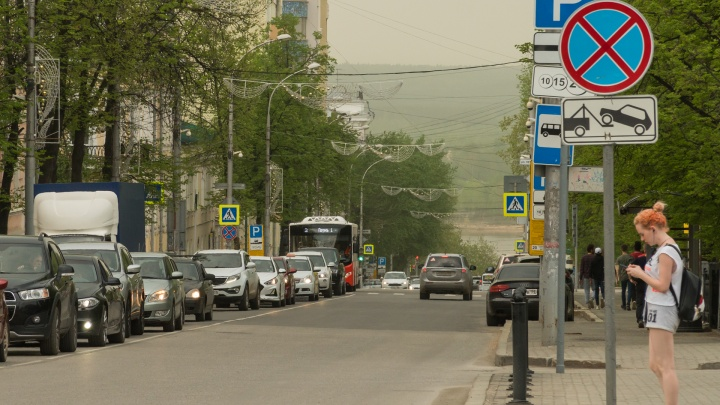 Над городом — зеленая пыль. Разбираемся, что это и как от этого спастись