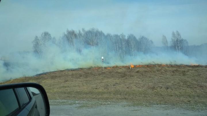 Видео: под Новосибирском горят поля