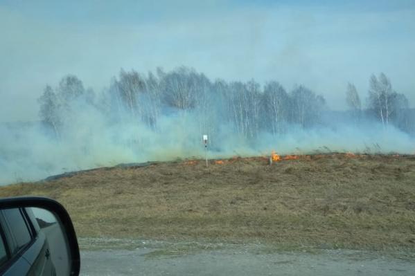 Каждые сутки в Новосибирской области фиксируется около тридцати точек возгорания травы