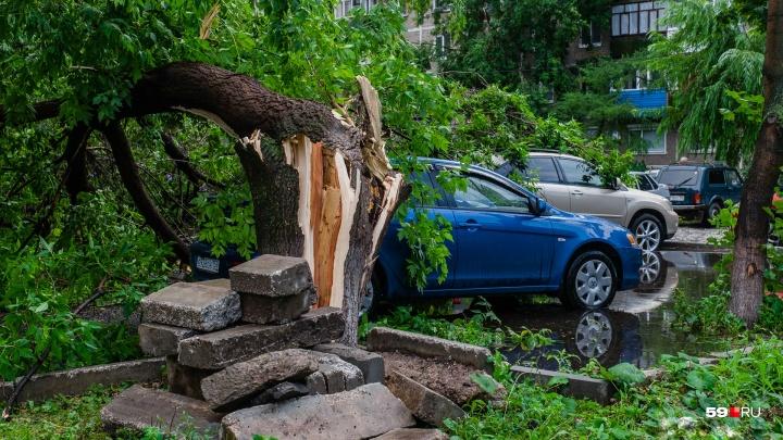 МЧС объявило в Прикамье штормовое предупреждение из-за града и ветра