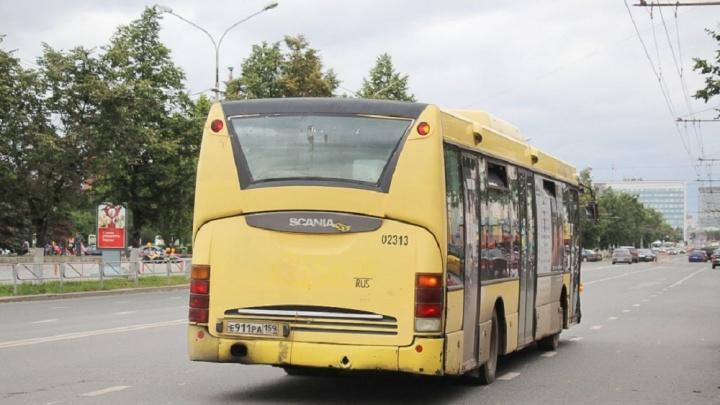 В Перми на месяц изменится движение трех автобусных маршрутов