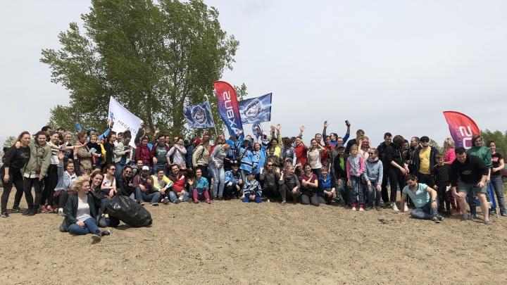Фото: на диком пляже у Заельцовского парка собрали сотни мешков с мусором и кучу порванных покрышек