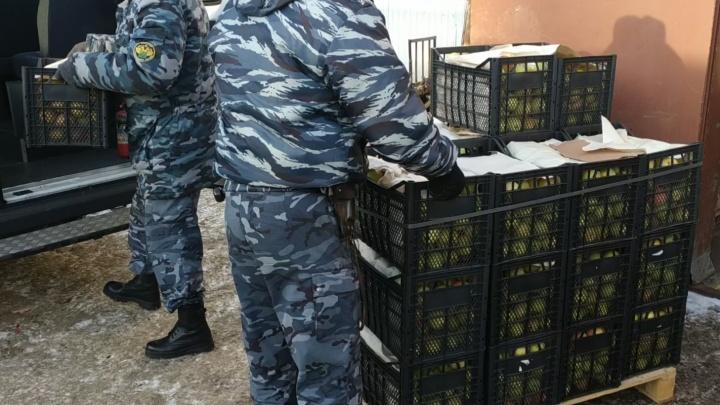 В Перми таможенники уничтожили 608 килограммов яблок