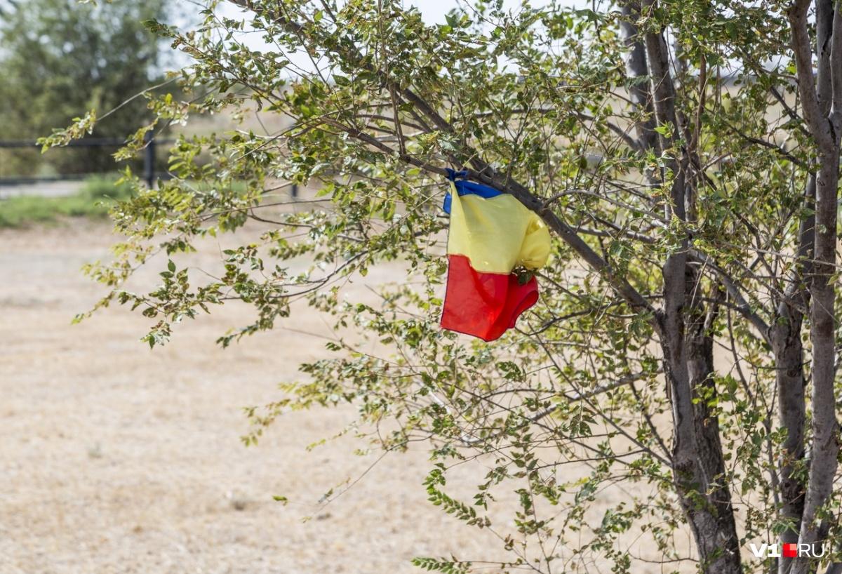 Посла Румынии официальные лица региона встречать не будут