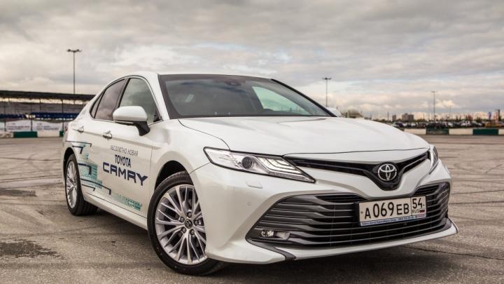 «Тойота» рулит: новосибирцы купили сотни новых Camry и RAV4