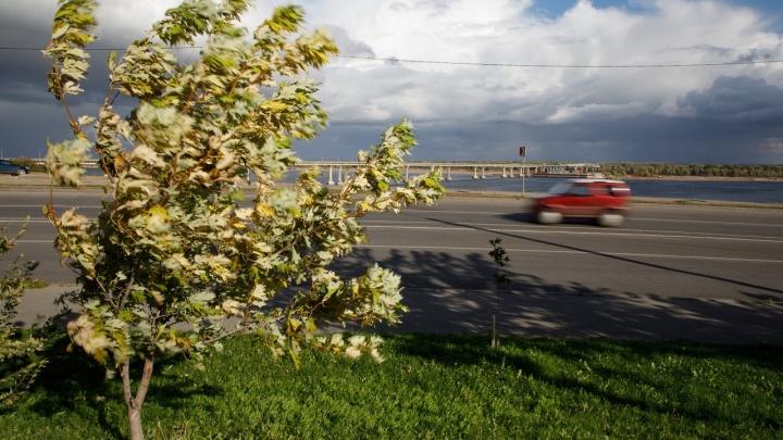 В Волгоградской области в ближайшие часы разбушуется крепкий ветер