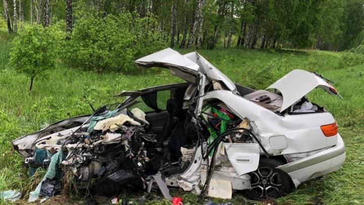 В полиции рассказали подробности смертельного ДТП на трассе под Новосибирском