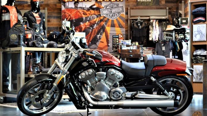 Куртку дают в подарок в «Harley-DavidsonКрасноярск»