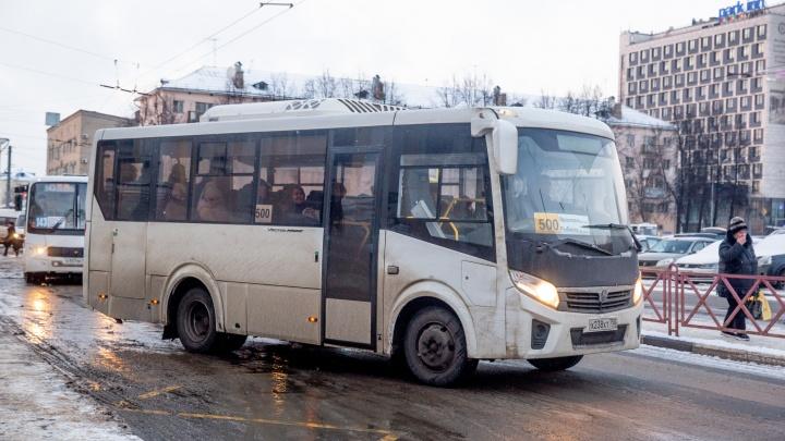 В Ярославской области после скандала власти возобновили отменённый автобусный рейс