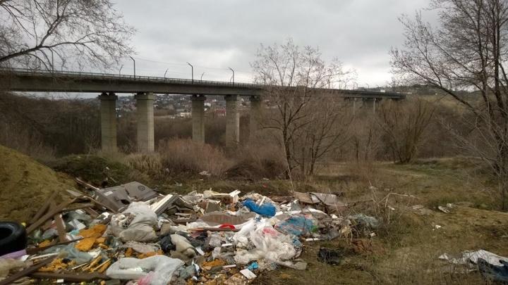 Кто, если не мы? Волгоградец решил не ждать помощи властей и выгрести мусор из поймы реки Царицы
