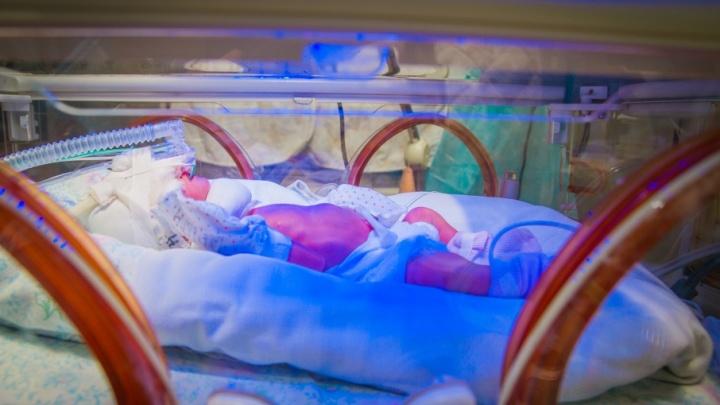 В Ростовской области за смерть новорожденного осудили врача-гинеколога