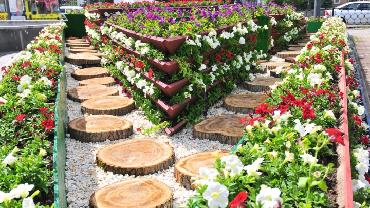 Бегонии, ирисы и петунии: мэрия закупит тысячи цветов для Екатеринбурга на 17 миллионов рублей