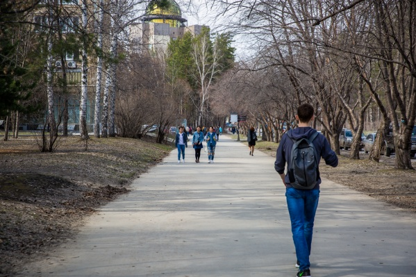 В первой половине недели температура по области повысится до +29 градусов, в Новосибирске ожидается до +26