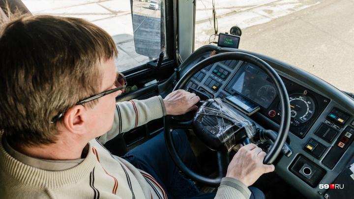 «Пермь рулит»: в Прикамье выберут лучшего водителя автобуса