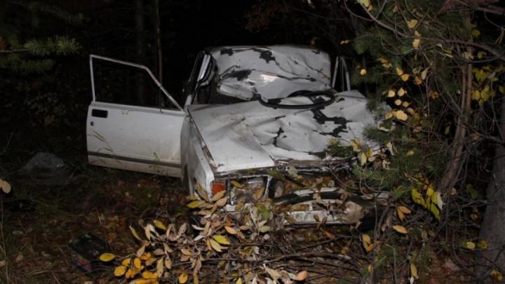На трассе под Богучанами молодой водитель на ВАЗе сбил лося. В аварии погибли оба