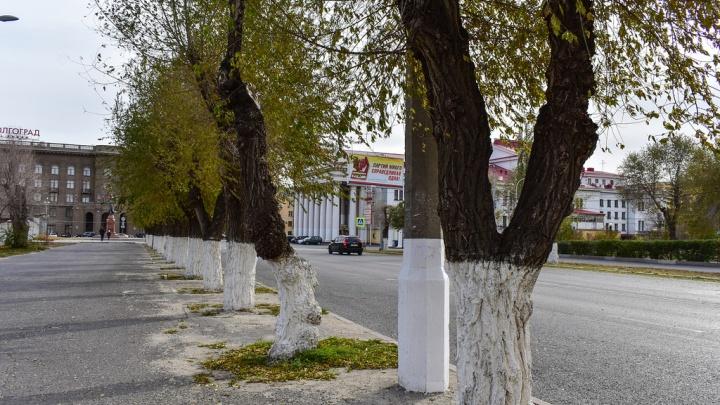 «Волгоград — столица пыли России»: известному российскому урбанисту город напомнил разруху
