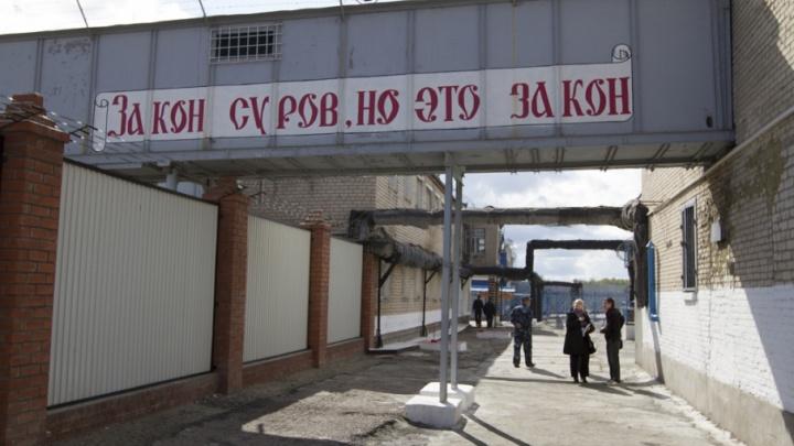 Житель Далматово обвиняется в убийстве пенсионерки и изнасиловании ее дочери