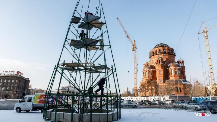 «Скелет» в окружении машин: новогоднюю ёлку в центре Волгограда убрали от храма к Главпочтамту
