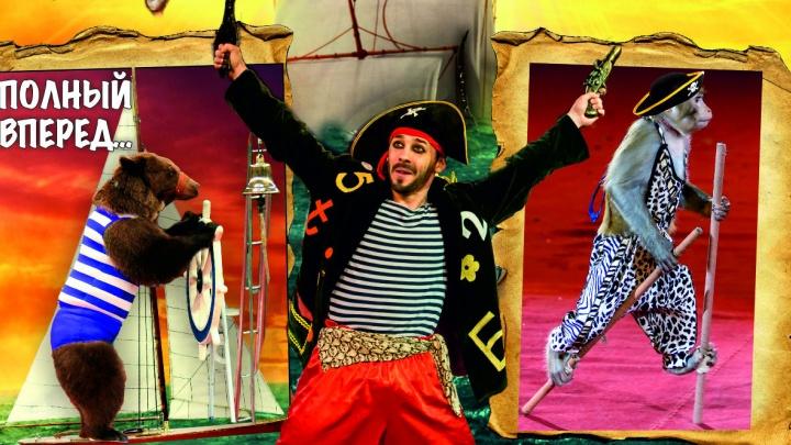 Артисты российского цирка устроят для ярославских детей дискотеку с подарками