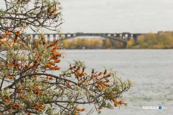 Весеннее тепло придёт в Красноярск в пятницу, но ненадолго