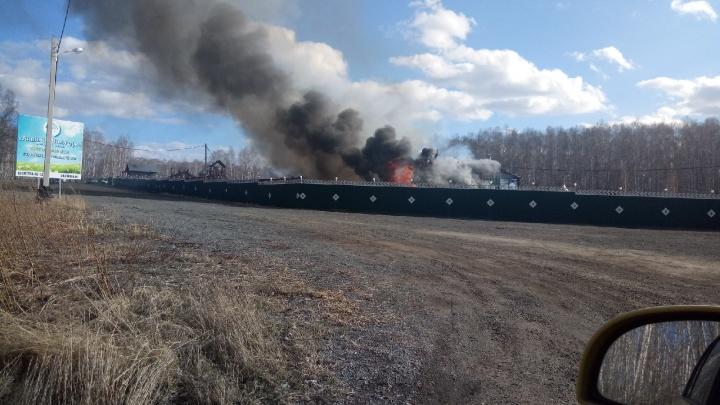Пожар уничтожил двухэтажное деревянное кафе в хаски-центре «Аквилон» под Челябинском