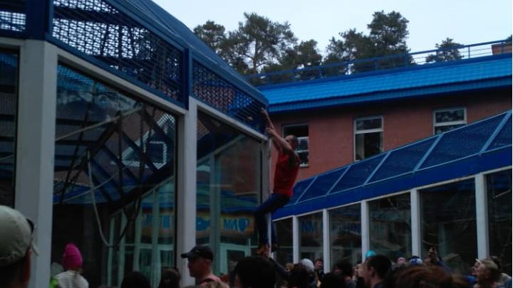 Накормить любой ценой: посетитель зоопарка залез на крышу дома орангутана