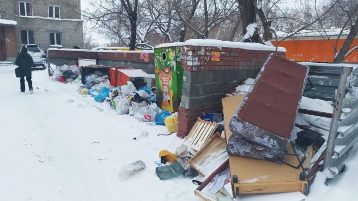 Новосибирск утонул в мусоре в первый день нового года