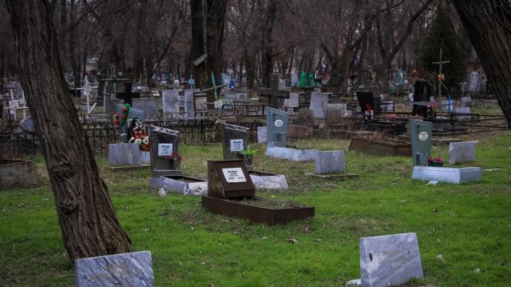 На борьбу с грызунами на ростовских кладбищах власти города потратят 700 тысяч