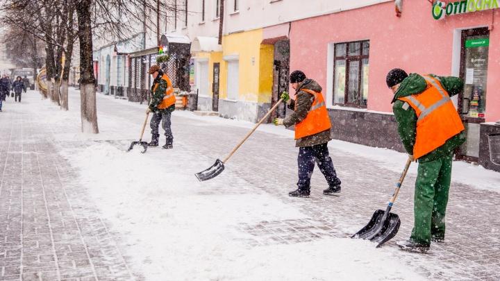 Метель, снежные заносы и порывистый ветер: когда на Ярославль обрушится непогода