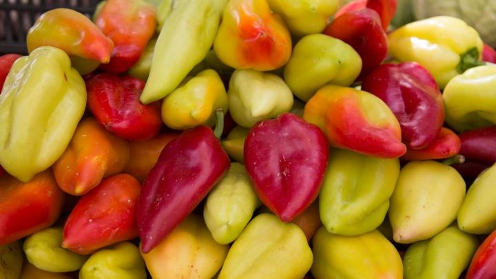 В Зауралье задержали 120 тонн перца и сухофруктов из Казахстана