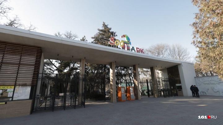 Что-то новенькое: письмо о бомбе получил ростовский зоопарк