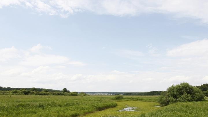 В Петуховском районе сельскохозяйственные земли испортили при демонтаже водопровода