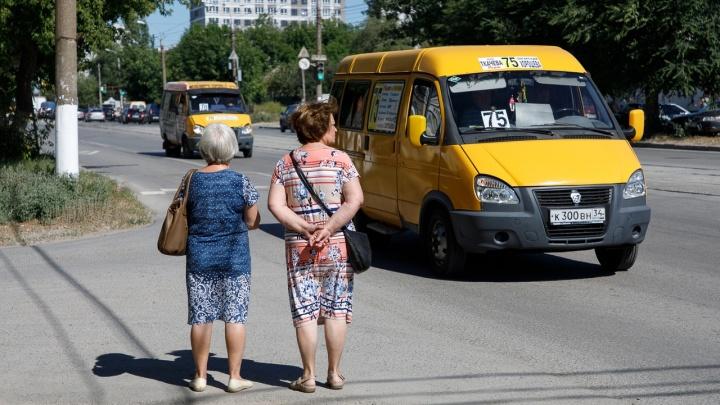 Грозы и дожди — ветер северный: в Волгоградской области до конца недели сохранится 37-градусная жара