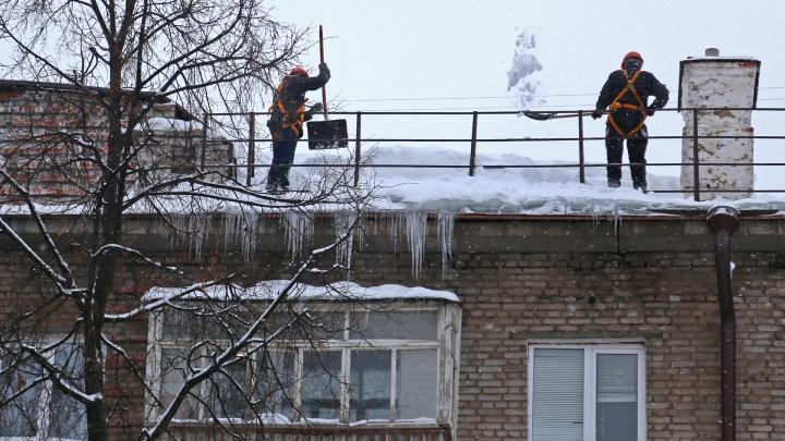 Все — на расчистку крыш: в мэрии Уфы потребовали наказать виновных за обрушение льда на детей