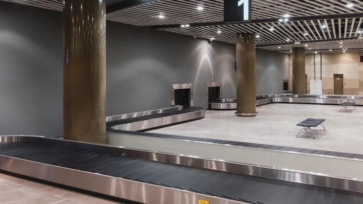 Пермяки не смогли получить багаж из-за проблем в аэропорту Шереметьево