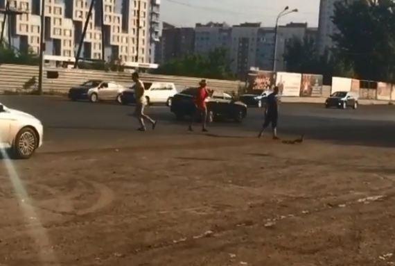 Неравнодушным водителям вновь пришлось спасать вышедших на дорогу утку с утятами