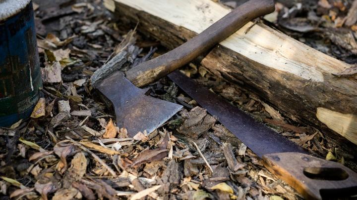 Омич избил восьмилетнего брата рукояткой топора
