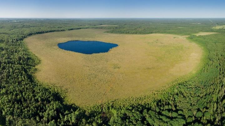 В Ярославской области появилась экотропа длиной более 150 километров