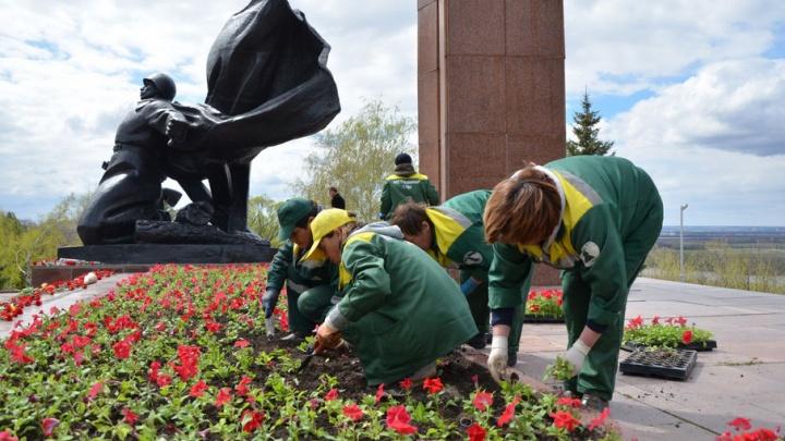 В парке Победы к празднику высадят 100 тысяч цветов