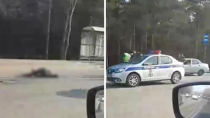 Шёл по «зебре» к остановке: в Челябинске на оживлённой дороге насмерть сбили пешехода