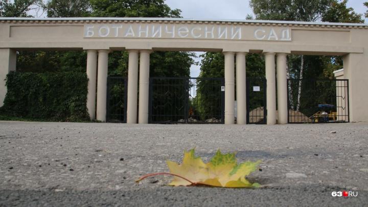 В Ботаническом саду до середины ноября отремонтируют асфальтовые дорожки