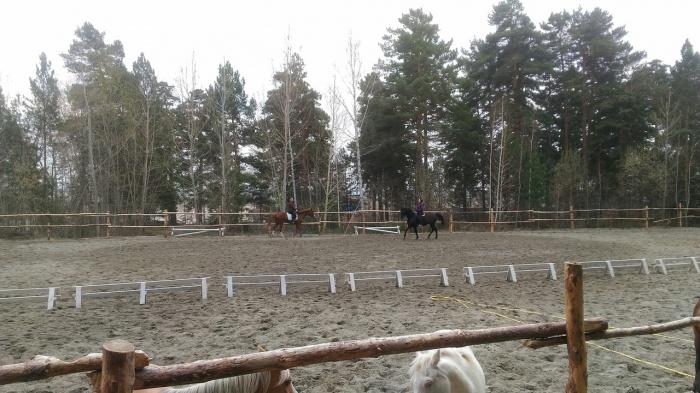 Так площадка конного клуба выглядела до нападения ночных вандалов