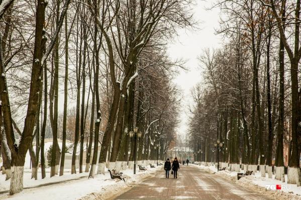 Существенных осадков в ближайшие дни в Ярославле не ожидается