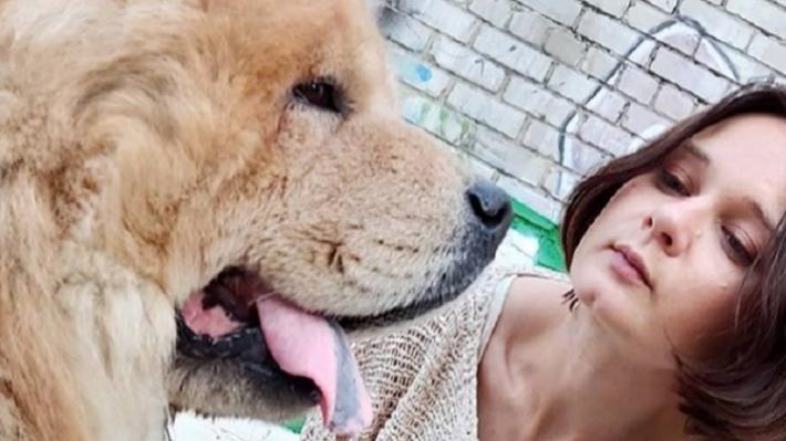 Брать шокер или перцовый баллончик? На нападения агрессивных собак жалуются все больше пермяков