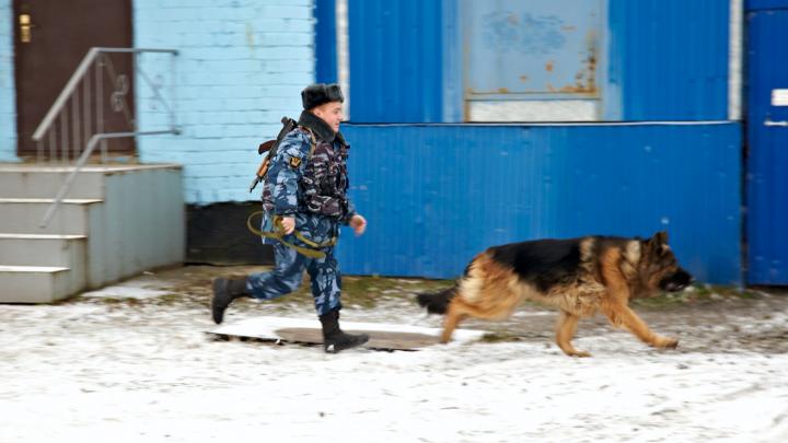 Суд оштрафовал две колонии и больницу в Котласе, Онеге и Архангельске