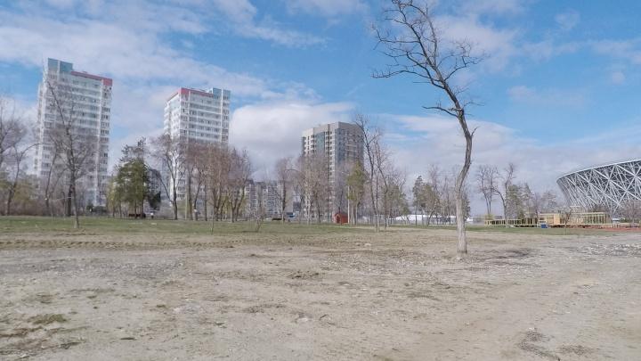 После дождика в четверг: в мэрии Волгограда верят в зеленое будущее ЦПКиО, но все зависит от погоды
