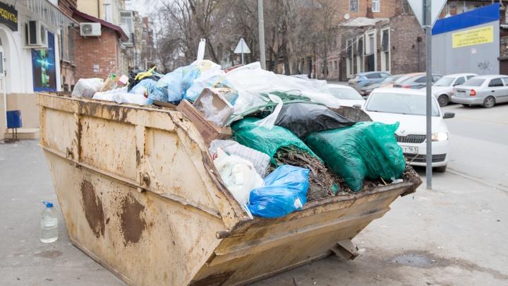 Многодетной матери из Сальска после жалобы на мусорную реформу чиновники нашли работу