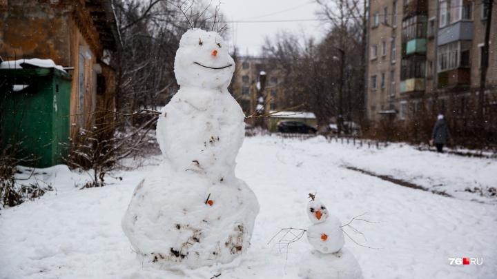 Дама с пышными формами, бандит и зомби: каких снеговиков лепят в Ярославле
