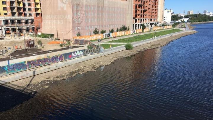 В Городском пруду Екатеринбурга на три месяца снизили уровень воды